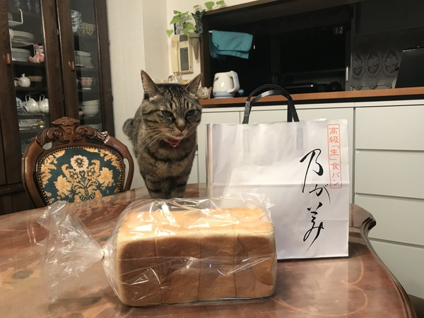 乃がみの食パン #エンビロン